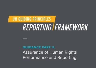 UN Guiding Principles Assurance Guidance