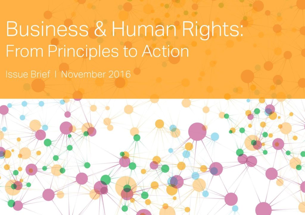 basic principles of human rights