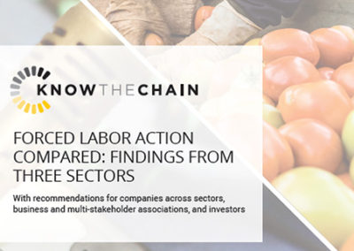 Forced Labor Action Compared: Findings from Three Sectors