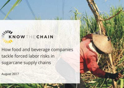How food and beverage companies tackle forced labor risks in sugarcane supply chains