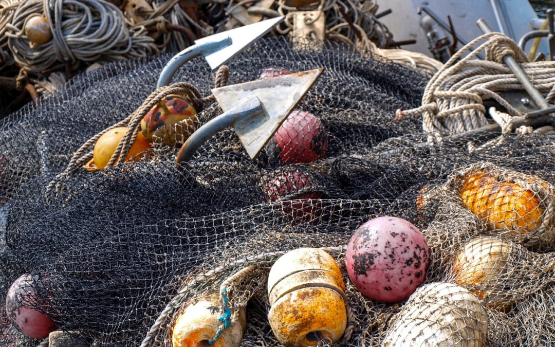 Thai seafood: are the prawns on your plate still fished by slaves?