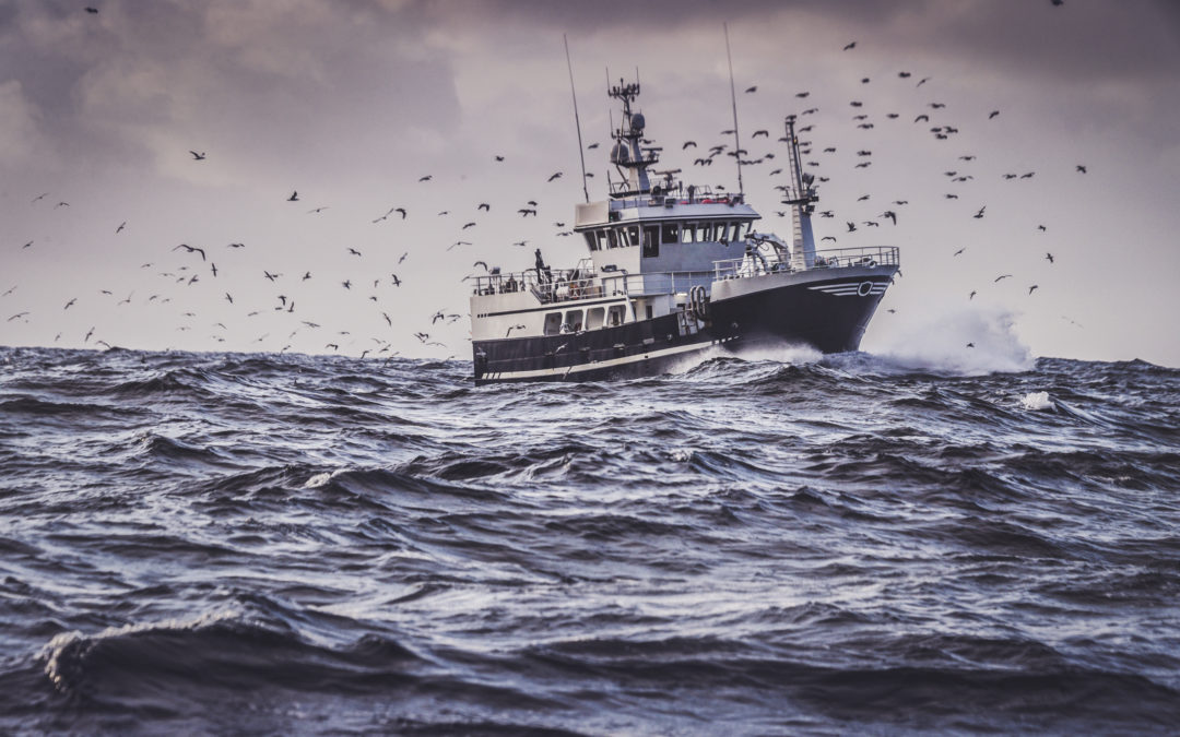 WBA launches first of its kind global benchmark ranking seafood companies on their UN SDG impact