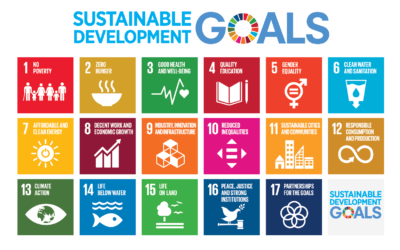 Are Big Companies Walking Their Talk on the SDGs? New report digs into the evidence