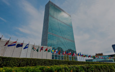 UN Working Group on Business & Human Rights presents report to General Assembly