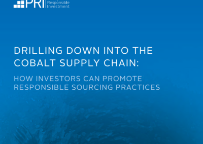 Drilling down into the cobalt supply chain