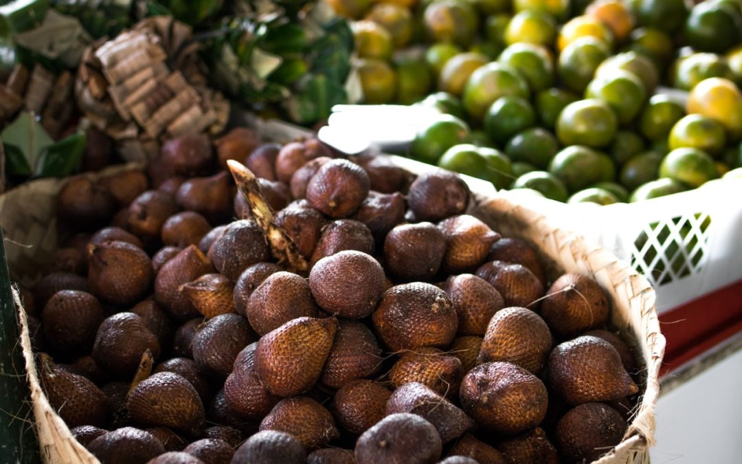 Court Orders Oil Palm Company to Return Land and Pay Arrears of Rent to Landowners in Sierra Leone