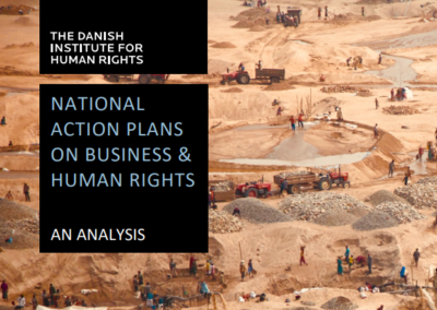 National Action Plans on Business & Human Rights – An Analysis