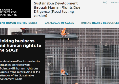 Sustainable Development through Human Rights Due Diligence (Road-testing version)