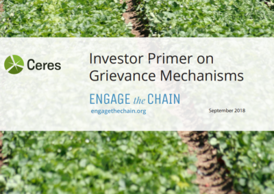 Investor Primer on Grievance Mechanisms