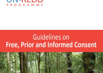 Guidelines on Free, Prior and Informed Consent