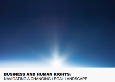 Business and Human Rights: Navigating a Changing Legal Landscape