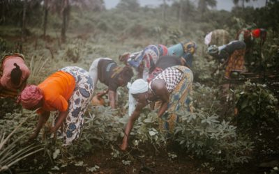 Three Sectors, Three Years Later: Progress and Gaps in the Fight Against Forced Labour