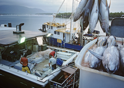 Out of Sight: Modern Slavery in Pacific Supply Chains of Canned Tuna