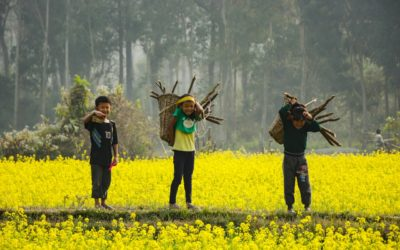 Child labour and human trafficking remain important concerns in global supply chains