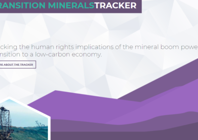 The Transition Minerals Tracker