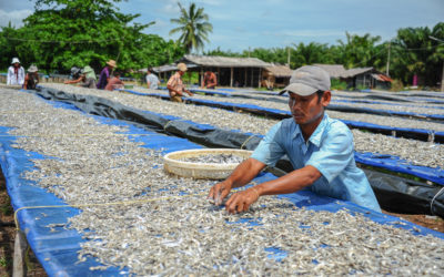 Seafood industry must walk talk