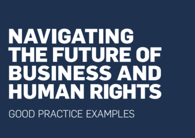Navigating the Future of Business & Human Rights: Good Practice Examples