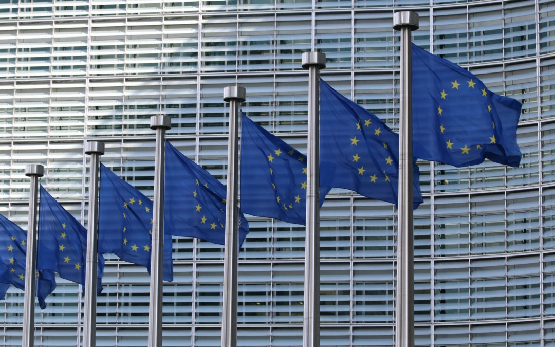 Nordic Business Network supports EU legislation on mandatory human rights due diligence