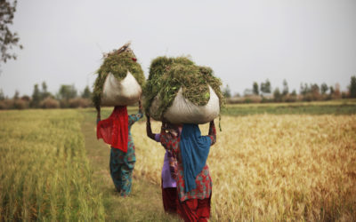 Migrant Voices: Stories of India's Internal Migrant Workers During the COVID-19 Pandemic