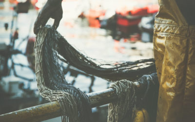 Tuna companies fail to tackle modern slavery in Pacific