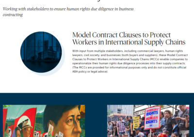 Contractual Clauses Project