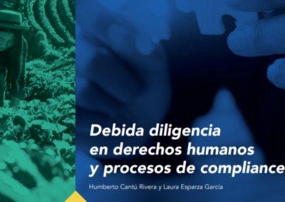 Debida diligencia en derechos humanos y procesos de compliance