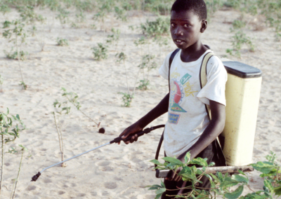 Pesticide management and child labour prevention